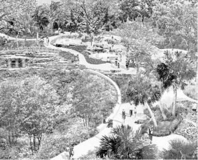 BOK TOWERS Garden