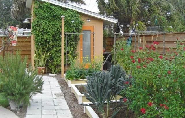 Bobolink after, back vegetable garden